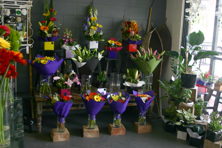 shop selection flowers gold coast
