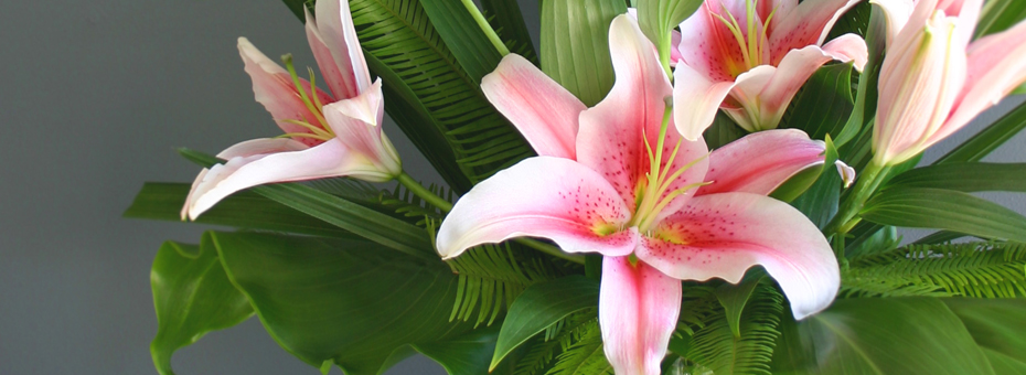 florist gold coast pink lily arrangement