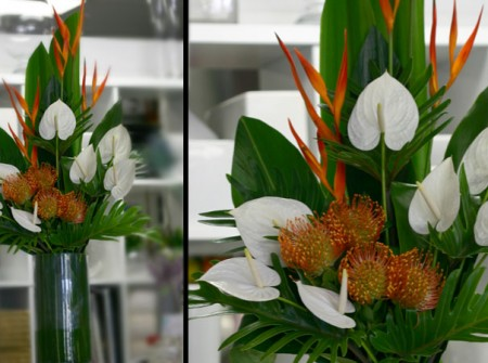Tall reception arrangement with white -angel- anthuriums, orange pincushion cordifoliums, heliconias and tropical foliage. Adams Garden Florist, Parkwood, Gold Coast.