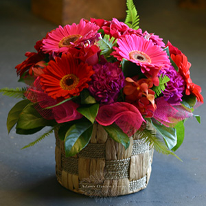 arrangement-vibrant-basket