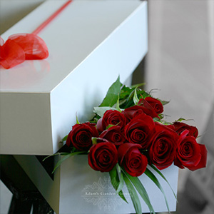dozen-rose-box