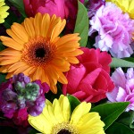 bright-flowers-florist-choice