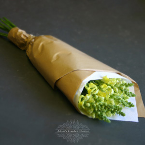 just-flowers-snapdragons-wrap