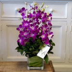 orchid glass cube vase
