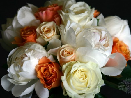 close up wedding posy peonies ivory roses apricot