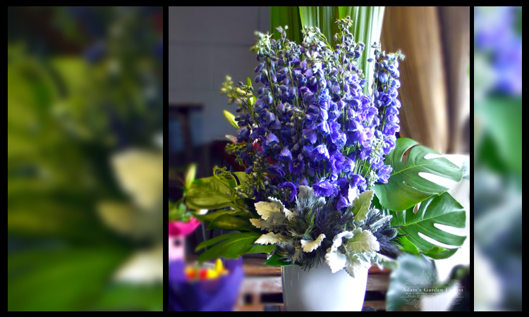 delphinium-arrangement