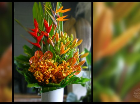 large orange floral arrangement gold coast florist