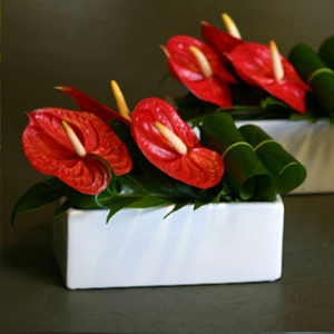 small table arrangement red modern ceramic