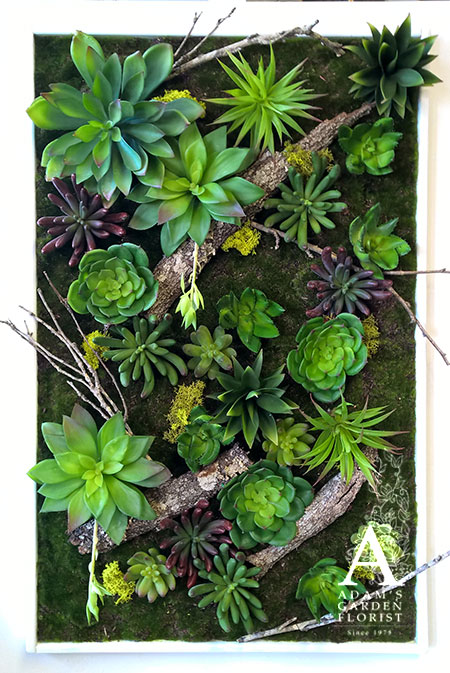 artificial succulent and moss hanging frame Gold Coast florist