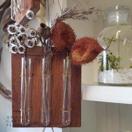 test tube hanging vase gift gold coast delivery