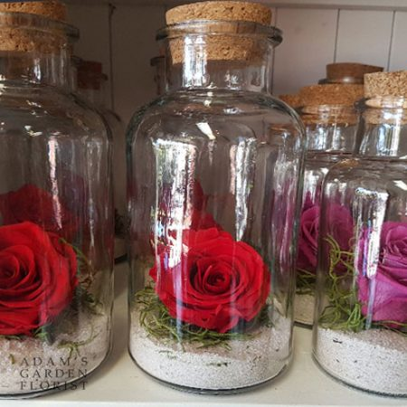 preserved rose in jar delivery gold coast