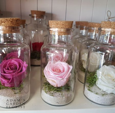 Preserved rose from Parkwood Florist
