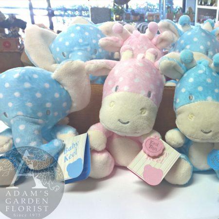 baby soft toy giraffe elephant Gold Coast florist