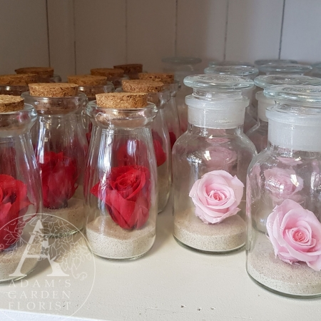 preserved rose wish-bottle gold coast florist